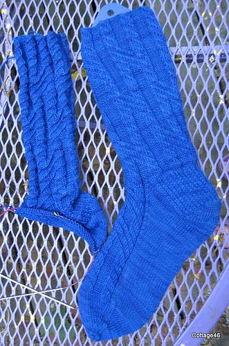 CookieA mystery socks
