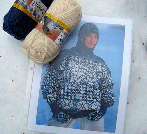 Dale of Norway polar bear sweater